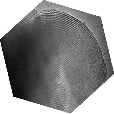 honeycomb-nanomaterials