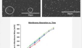 Mesoporous Silica Applications